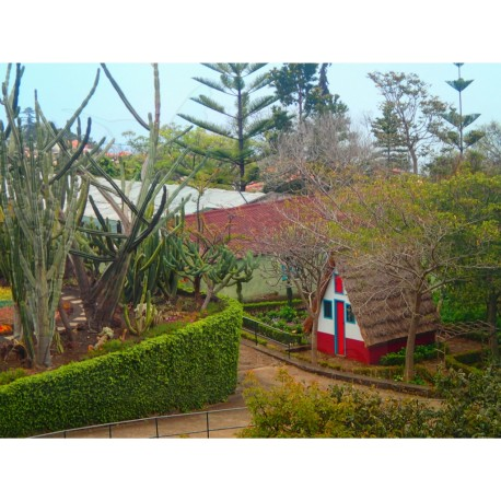Madeira ostrov věčného jara